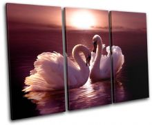 Swans Love Hearts Pink Animals - 13-0106(00B)-TR32-LO